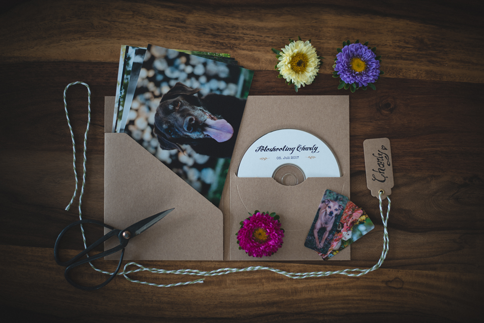 SF-Verpackung Fotopaket klein